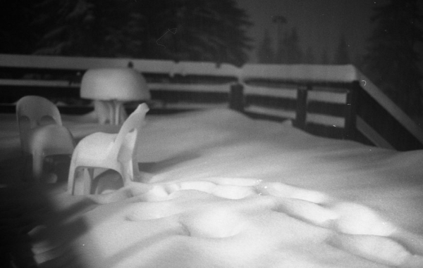Dialogues de la deuxième neige